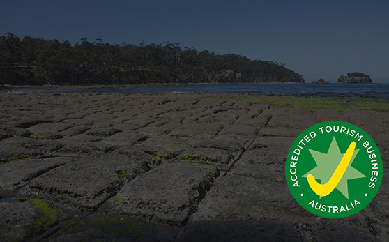 Just 8 minutes from the Tessellated Pavement